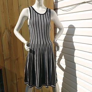 Ann Taylor Fit and Flare Striped Dres